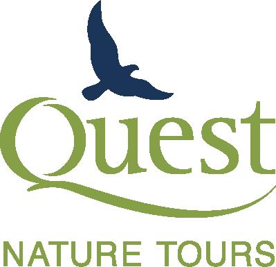 Quest Nature Tours