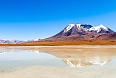Altiplano, seen on our optional extension titled Bolivian Highlands: From La Paz to the Uyuni Salt Flats