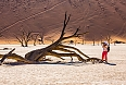 Photographing the millennial dead trees at Deadvlei